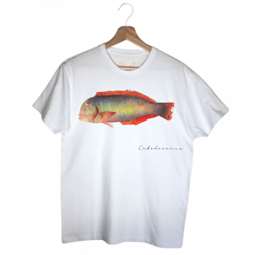 camiseta lorito